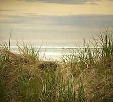 Over the Dune by Benjamin Hamilton