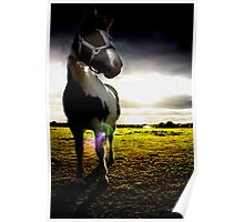 Overpowering horse Poster