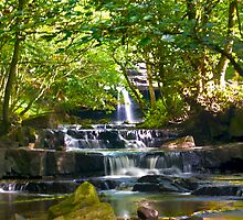 Summerhill Falls by Trevor Kersley