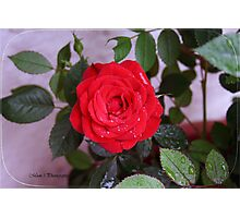 Red Soul Photographic Print