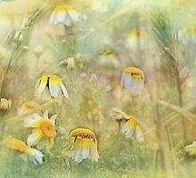 fairytale by Teresa Pople