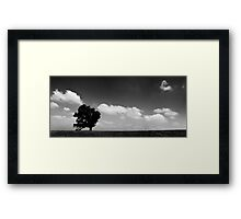 standing alone tree Framed Print