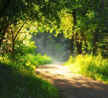 Fairy Forest by Eivor Kuchta