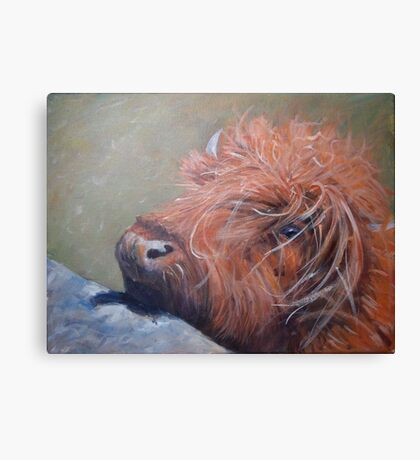 ickle hairy cow Canvas Print