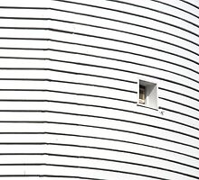Curved Wall, Square Window by Celia Strainge