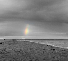 A Lonely Rainbow by Ellis Lawrence