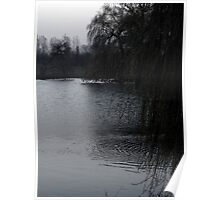 Cold Icy Pond Poster