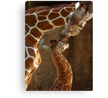 """Mother's Kiss"" Canvas Print"