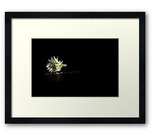 Canon and tiny wild flower Framed Print