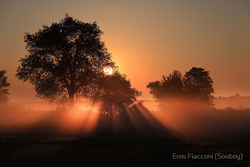 Misty sunrise Rockwood Ontario Canada by Eros Fiacconi (Sooboy)