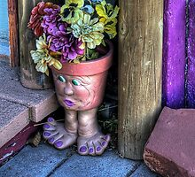 Doorstep Treasures by K D Graves Photography