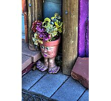 Doorstep Treasures Photographic Print