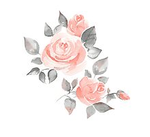 Beautiful roses. Hand-drawn  watercolor flowers  Photographic Print