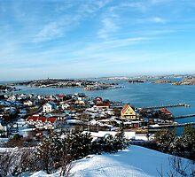 Swedish Island - Snowy View by VioletHalo
