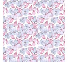 Pattern with delicate flowers Photographic Print