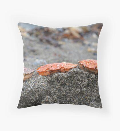 Crab Heads Throw Pillow
