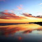 A Beach View by Terri~Lynn Bealle