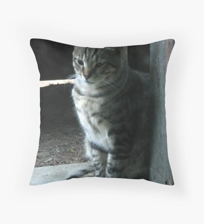 Tiny Tabby Tucks Throw Pillow