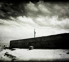 The boy on the wall by Nicola Smith