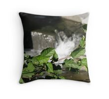 Alder at bear Creek Throw Pillow