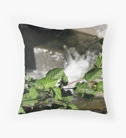 Alder at bear Creek Throw Pillow