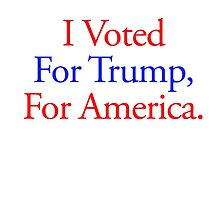 I Voted For Trump by ryan2611