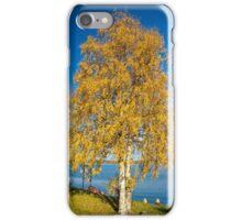 Yellow birch iPhone Case/Skin