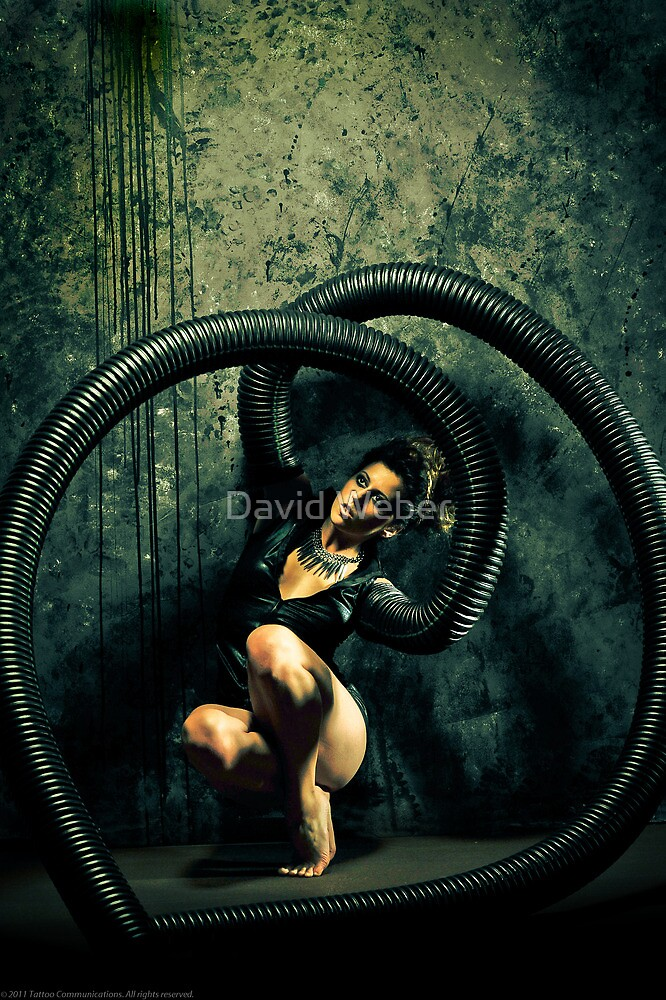 Black Widow 4 by David Weber