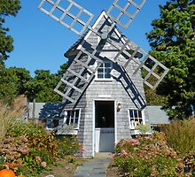 Windmill Home by AnnDixon