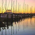 Golden Marina by Jill Fisher