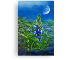 """Wild Lupin"" Canvas Print"