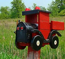 Country Mail Box by AnnDixon