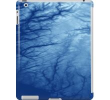 Southern Norway iPad Case/Skin