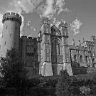 Arundel Castle by James Taylor