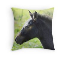 Connemara Pony Foal in Green Field Throw Pillow