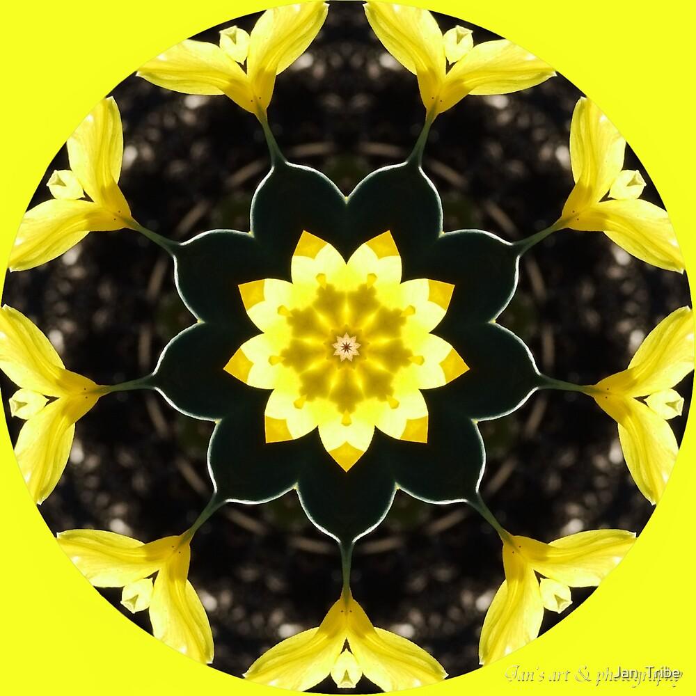 Springtime Kaleidoscope by Jan  Tribe