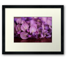 Wisteria On Top Of A Desk Framed Print