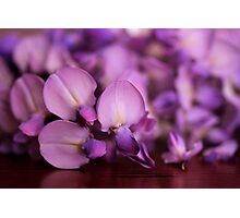 Wisteria On Top Of A Desk Photographic Print