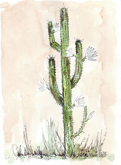 Cactus - Cereus jamacaru by Maree  Clarkson