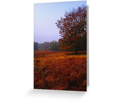 Autumn Field Greeting Card