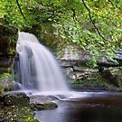 West Burton Falls II by Andrew Leighton