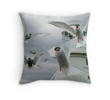 Tern Attack Throw Pillow