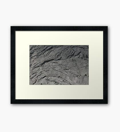 Gray Scale Framed Print