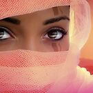 Desert Rogue by Zohar Lindenbaum