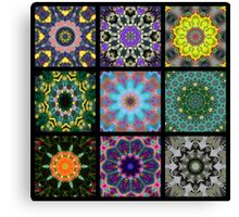 A group of Kaleidoscopes Canvas Print
