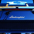 Lamborghini by Ron Hannah
