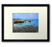 Coral Bay Framed Print