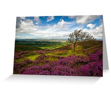 Stiperstones Heather, Shropshire, England Greeting Card