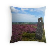 The Standing Stone Throw Pillow