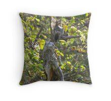 Iguana and Squirrel at the River Cuale Throw Pillow